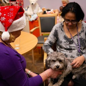 Women with dementia with an animal therapy dog in her lap