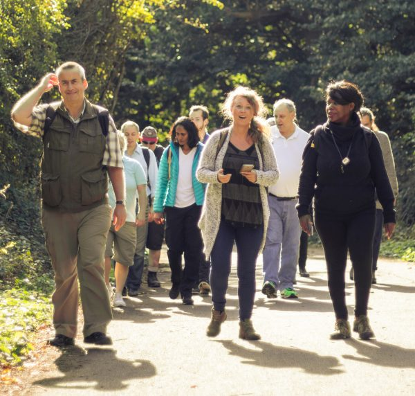 A group of people walking in a green location